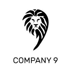 COMPANY 9 LLC